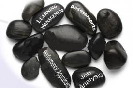 Integrating HR Tools